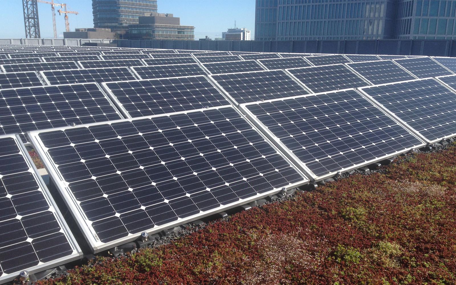 solpaneler på tak i Malmö